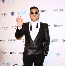 Gangnam Style : C'est la fin ! Enfin !