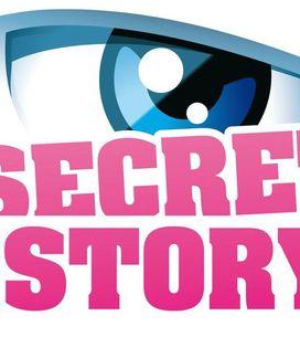 Secret Story : Sergueï, Alexandre, Thomas et Nadège nominés