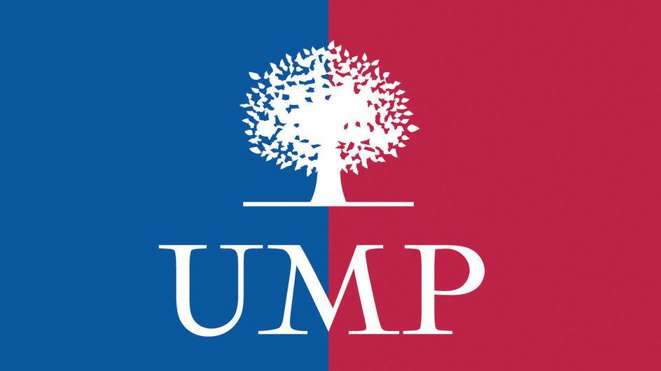 UMP : Les militants éliront leur chef les 18 et 25 novembre prochains