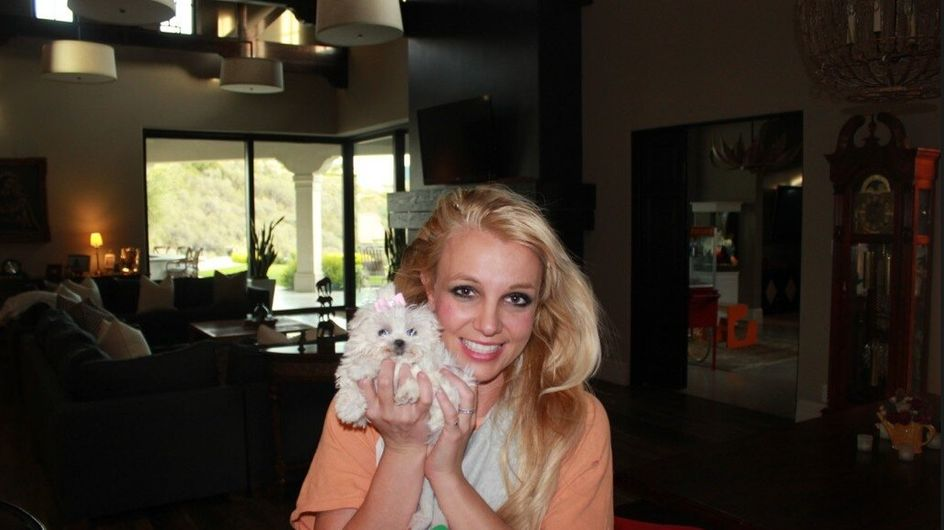 Britney Spears : Elle adopte ! (Photos)