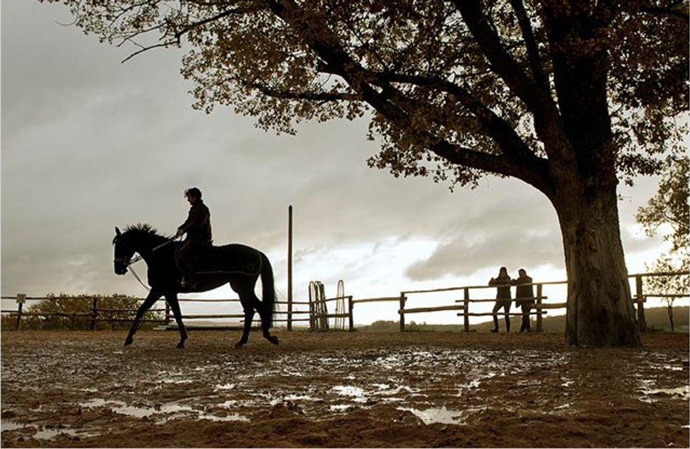 Jappeloup : Une histoire d'hommes et de chevaux
