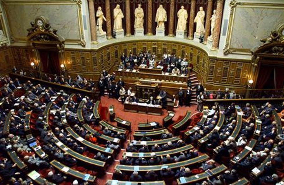 Mariage gay : Le Sénat adopte le premier article