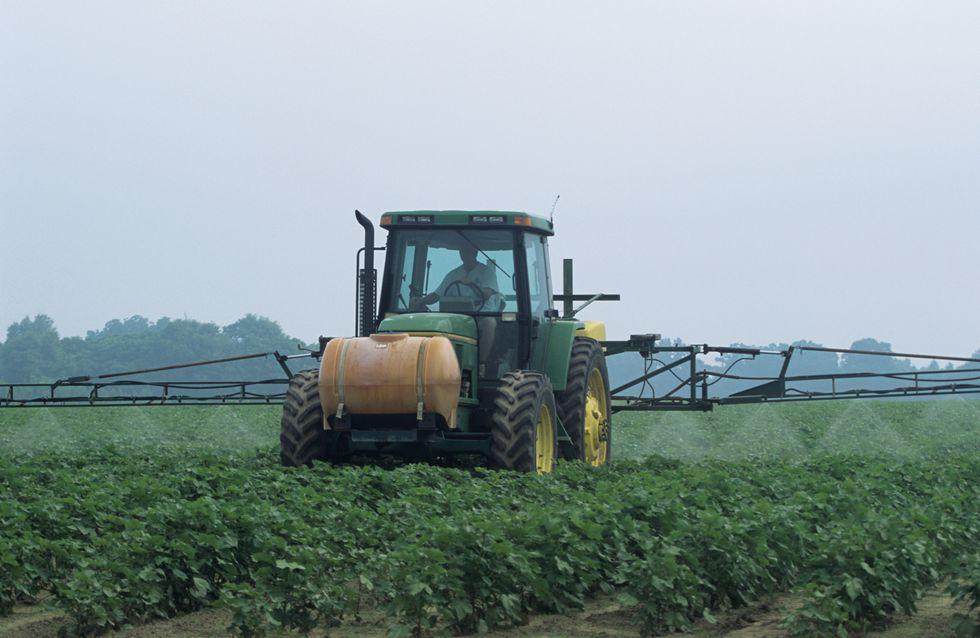 Pesticides : Les Français plus exposés que la moyenne