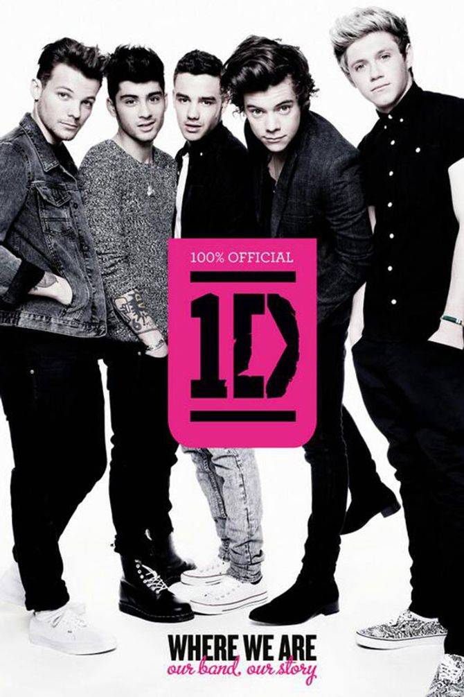 One Direction book cover