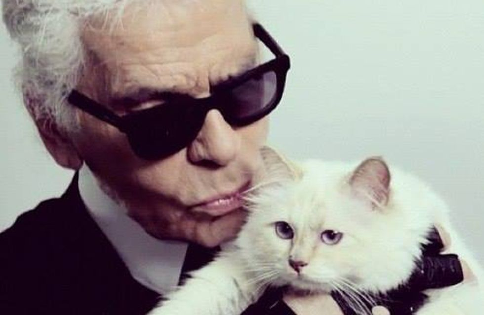 Karl Lagerfeld : Il veut se marier avec Choupette (son chat)