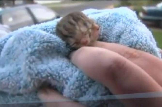 Deucy, le petit chaton né en Oregon