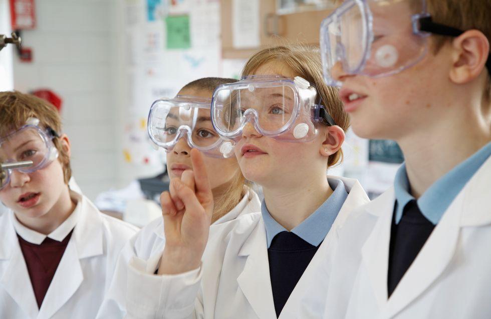 Une fillette de 12 ans lance une pétition contre la dissection en classe