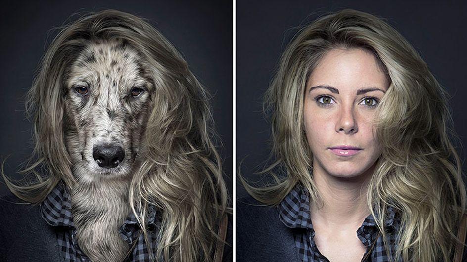 Un photographe met des chiens dans la peau de leurs maîtres