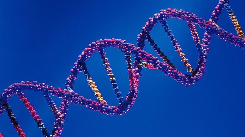 Conception : Trois ADN pour un bébé, bientôt autorisé ?