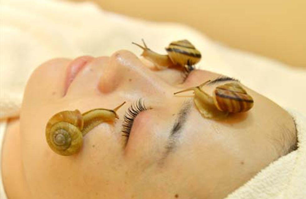Un soin du visage avec des escargots vivants