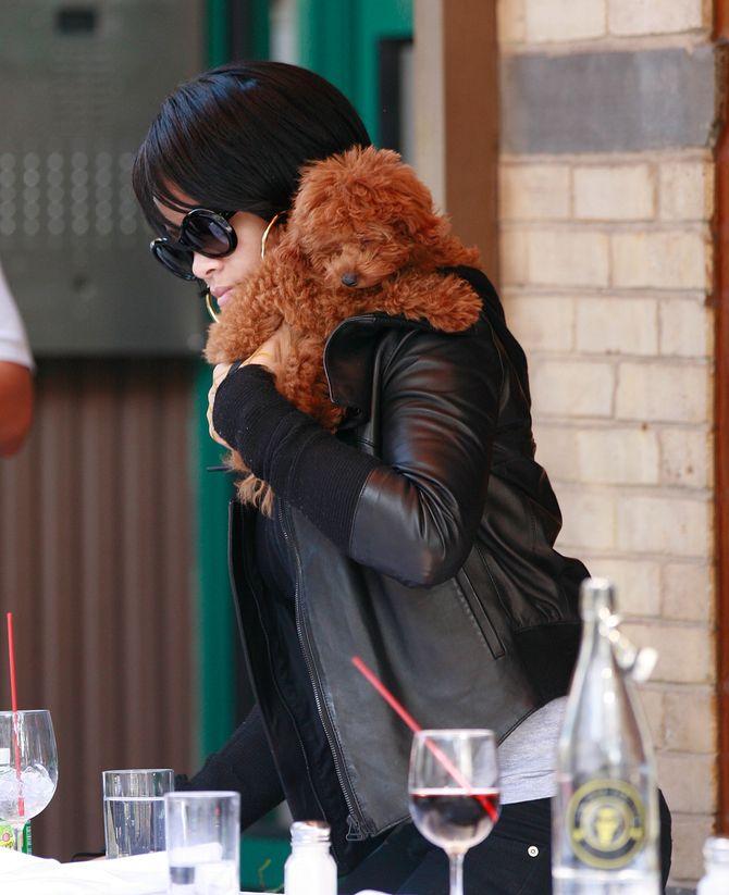 Rihanna mit ihrem Hund
