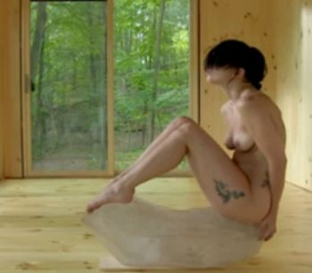 Lady Gaga komplett nackt: Kunst oder Klamauk?