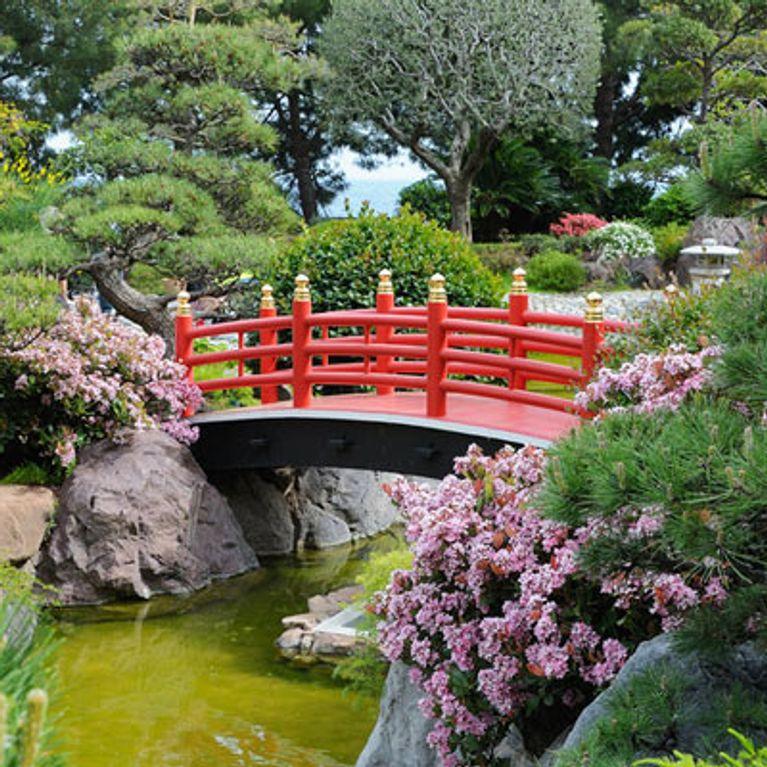 Jardin zen : le japon dans votre jardin