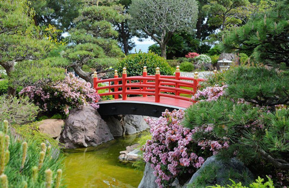 Invitez le japon dans votre jardin