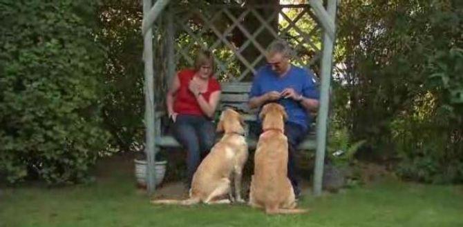 Claire, Mark et leurs chiens