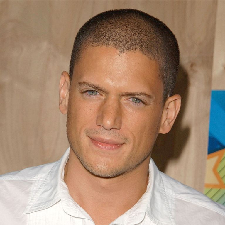 Wentworth Miller: Russland-Protest Nach Coming-out