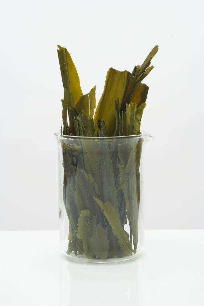 2500 mg : Les algues