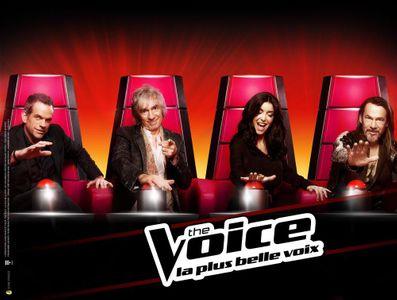 Louis Bertignac quitte The Voice