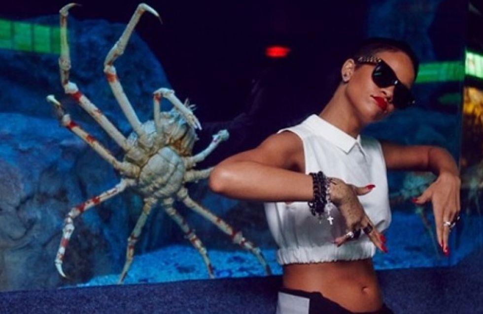 Rihanna : Comme un poisson dans l'eau (Photos)