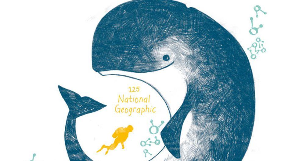National Geographic Retail Store entrega los premios de diseño conmemorando los 125 años de National Geographic