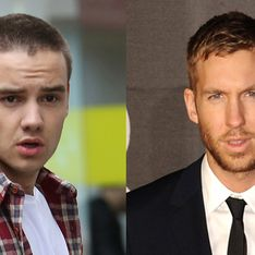 Liam Payne saves Calvin Harris from a flying dwarf at Miley Cyrus' birthday bash