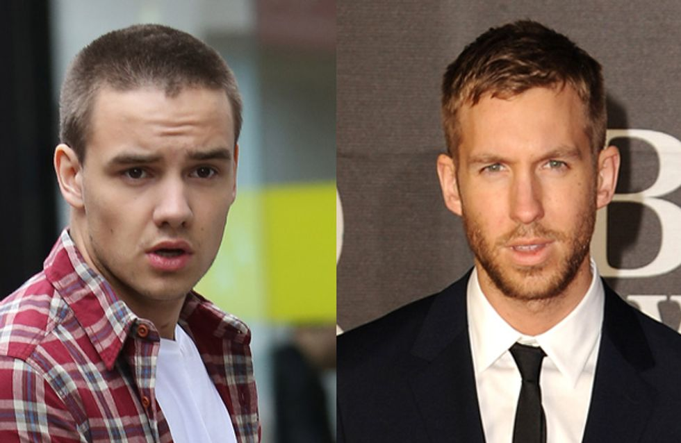 Liam Payne saves Calvin Harris from a flying dwarf at Miley Cyrus' birthday bash