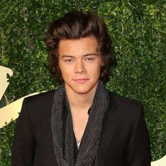 Harry Styles wins British Style Award at the British Fashion Awards 2013