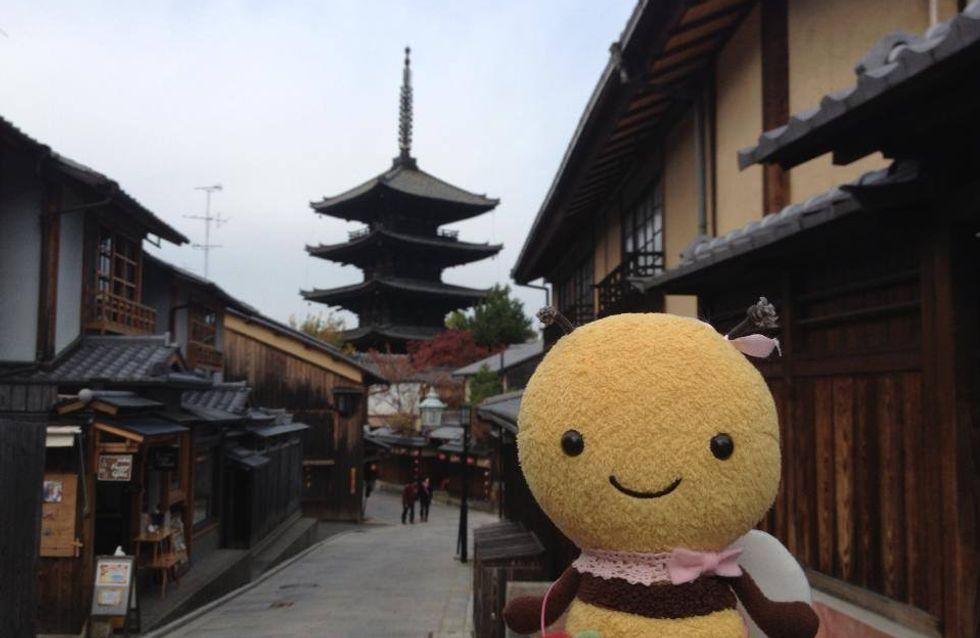 Insolite : Une agence de voyage pour peluches au Japon !