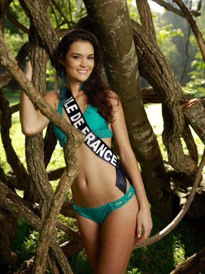 Miss Île-de-France - Miss France 2014