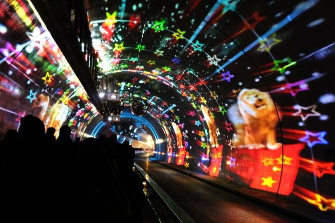 Fête des lumières 2013 Tunnel de la Croix Rousse