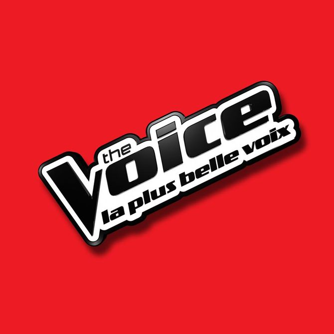 The Voice 3 candidats