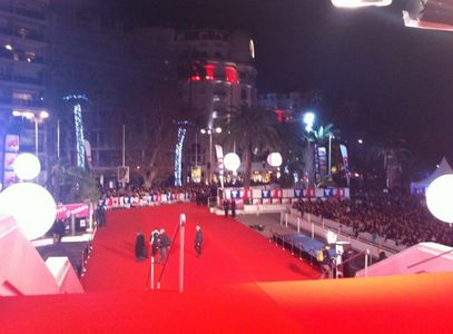 Le tapis rouge des NRJ Music Awards