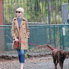 Igitt! Anne Hathaway soll Paparazzo-Auto mit Hundekot verschönert haben
