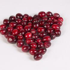 Santé : De la cranberry pour prolonger l'espérance de vie ?