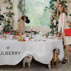 Cara Delevingne : Tea Party sexy pour Mulberry (Photos et Vidéo)