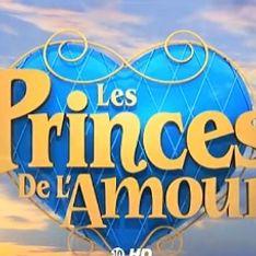 Les Princes de l'amour, ça commence ce soir ! (Vidéo)