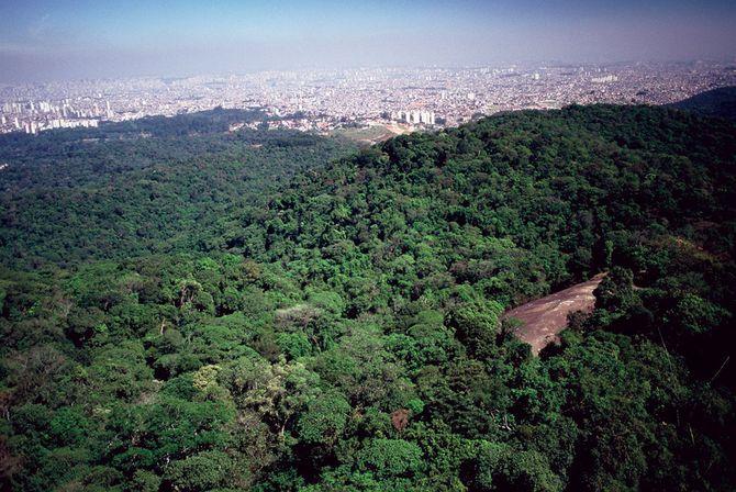 Vista da Pedra Grande
