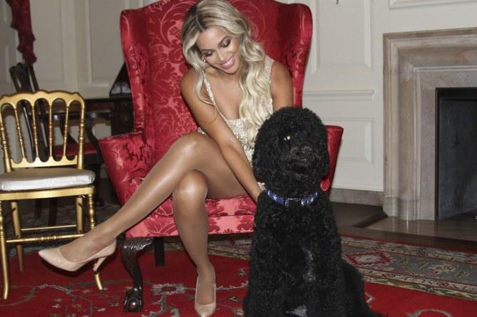 Beyoncé con el perro de la familia Obama, Sunny