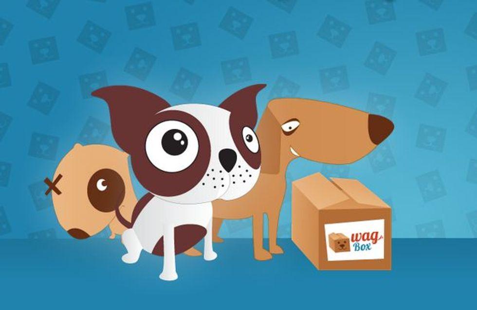 WagBox, il nuovo kit a sorpresa per i cani