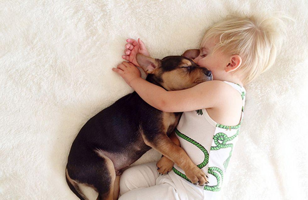 Trova le differenze tra i cuccioli: il bimbo e il cagnolino che dormono sempre abbracciati