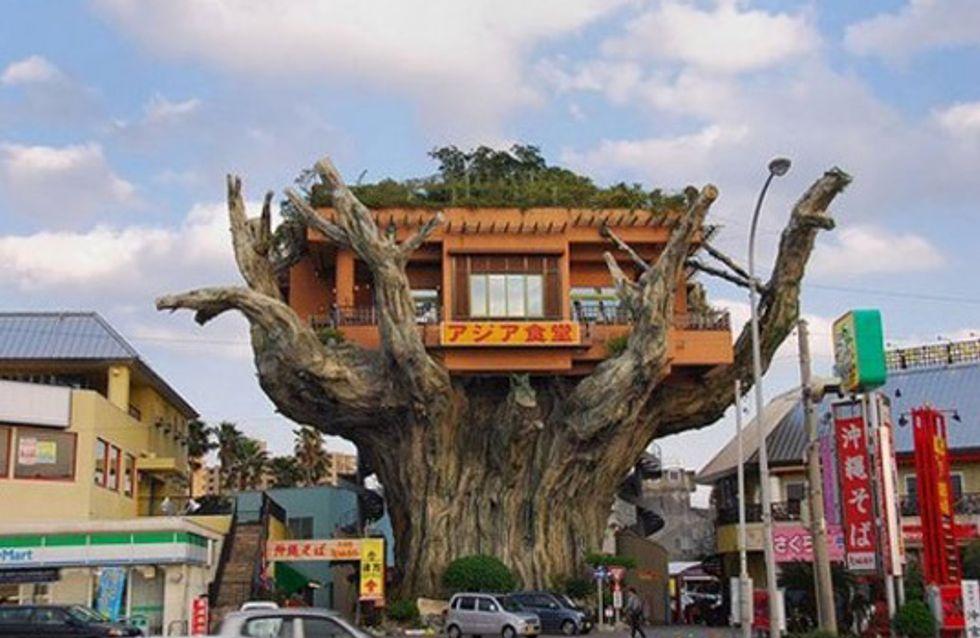 Le case più incredibili: vivresti mai in una di queste abitazioni?