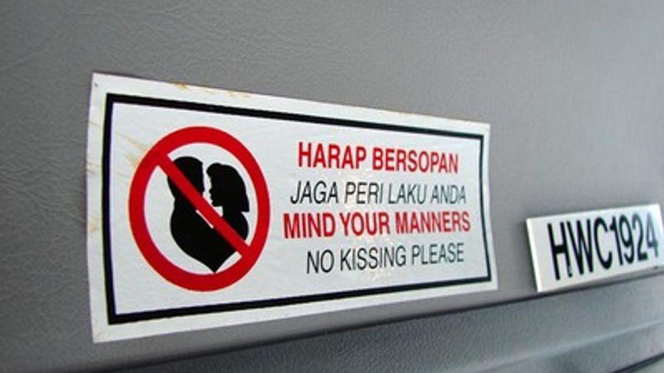 Rospi a passeggio, canguri in riproduzione e baci proibiti. I cartelli stradali più incredibili!