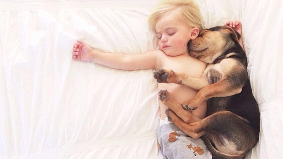 Ce petit garçon et son chien ne se séparent jamais ... Même pas pour dormir !
