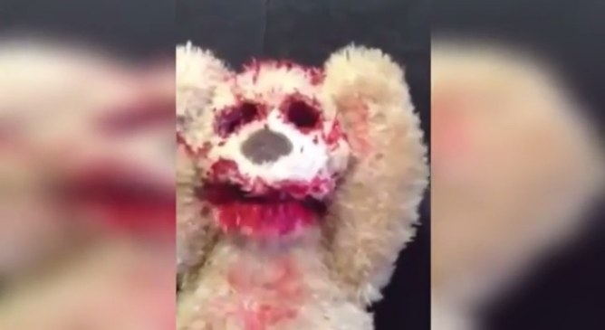 L'ours en peluche gore