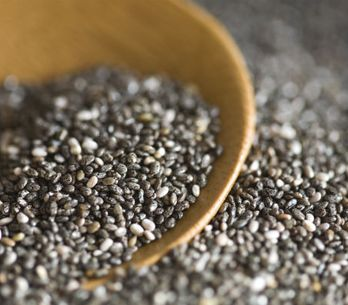 The New Secret Health Booster: The 10 Surprising Benefits Of Chia Seeds
