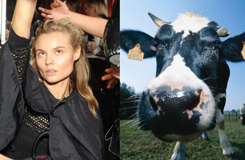 Fashion Week #WTF : Salon de l'Agriculture et Fashion Week, même combat