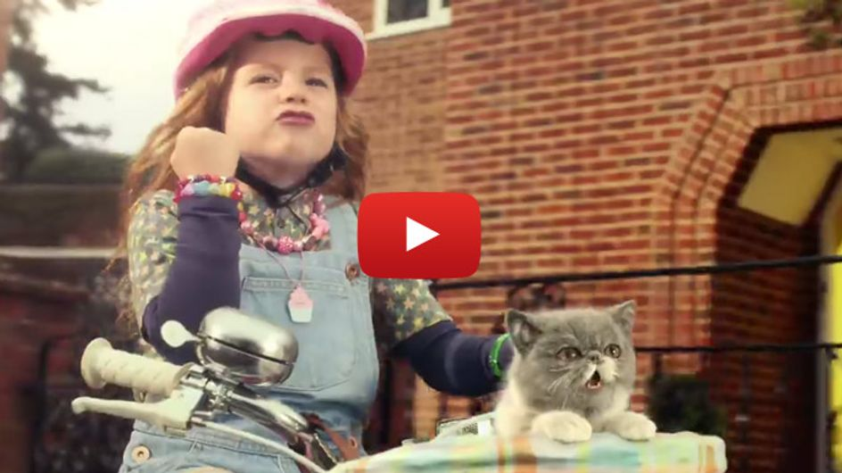 Setzt den pinken Helm auf und rockt mit: Diese Katze geht ab!