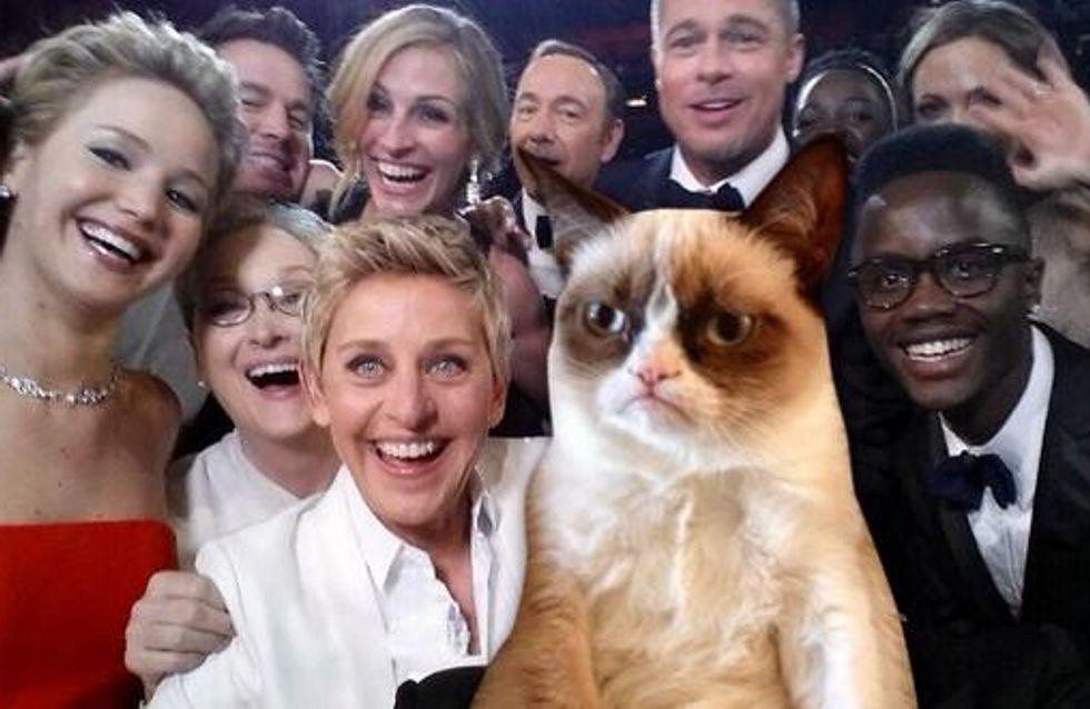 Oscars 2014 : Grumpy Cat, Patrick l'étoile de mer et la pizza s'invitent sur le selfie d'Ellen DeGeneres