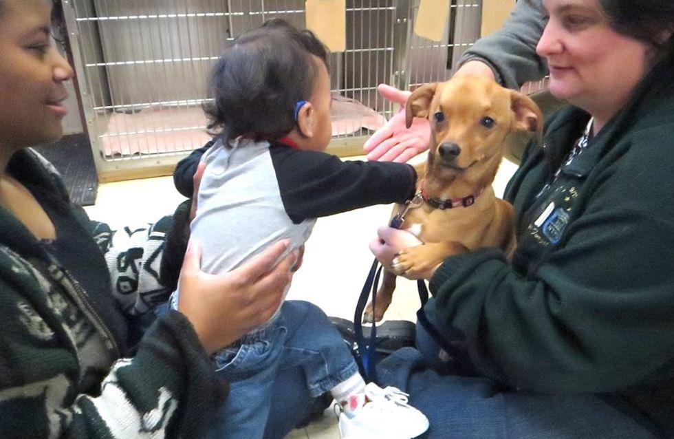Un petit garçon et un chien unis par la même maladie