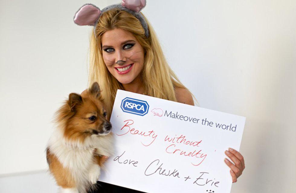 Makeover The World! How Your Selfies Can Help The RSPCA End Suffering Against Animals
